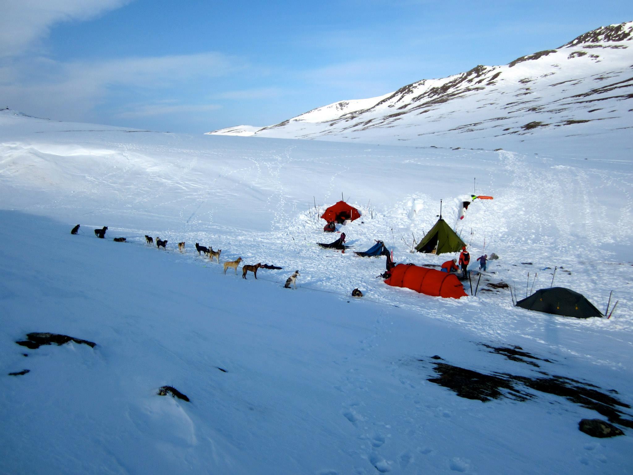 Overnatting i telt på sledetur